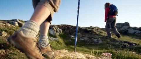 Les équipementiers sportifs font du trail un relais de croissance
