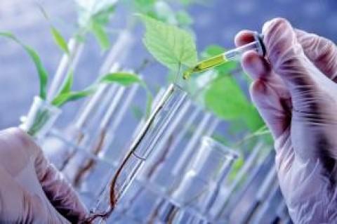 3,7 milliards d'euros pour faire de l'Europe le leader mondial des bio-industries