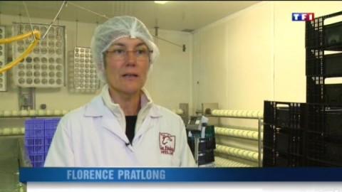 Une fromagerie redonne vie au plateau de Causse Méjean