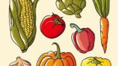 Un appel à projet régional sur la «Lutte contre le gaspillage alimentaire»