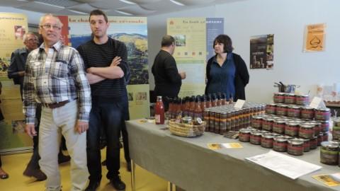 6 castanéiculteurs créent la marque Castane, à base de châtaigne bio