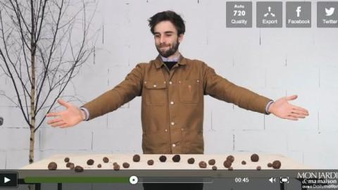 Vidéo – Ciel Mon Radis : créer des bombes à graines pour fleurir sa ville