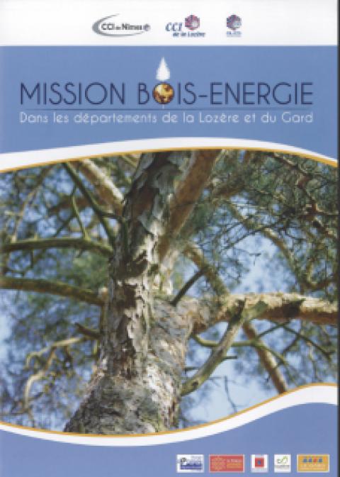 Impacts économique et environnemental de la filière bois énergie en Lozère