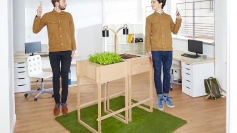 Quand l'agriculture urbaine s'invite au bureau