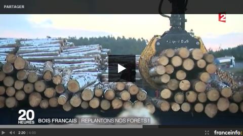 France 2 en Lozère pour illustrer l'avenir de la filière bois