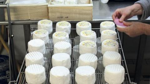 Un atelier technologique spécialisé en produits laitiers comme projet à Langogne