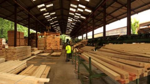 Les chiffres clefs de la récolte de bois et de l'activité des scieries en région Occitanie