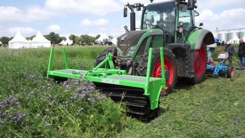 La Lozère veut faire fleurir une filière dédiée aux plantes